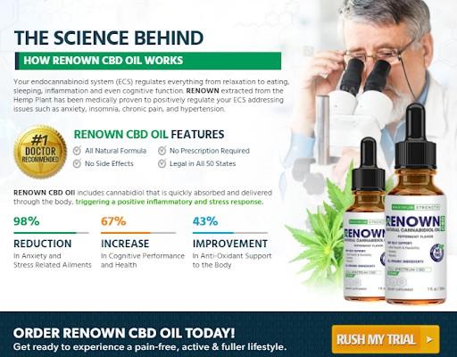 Renown CBD Oil